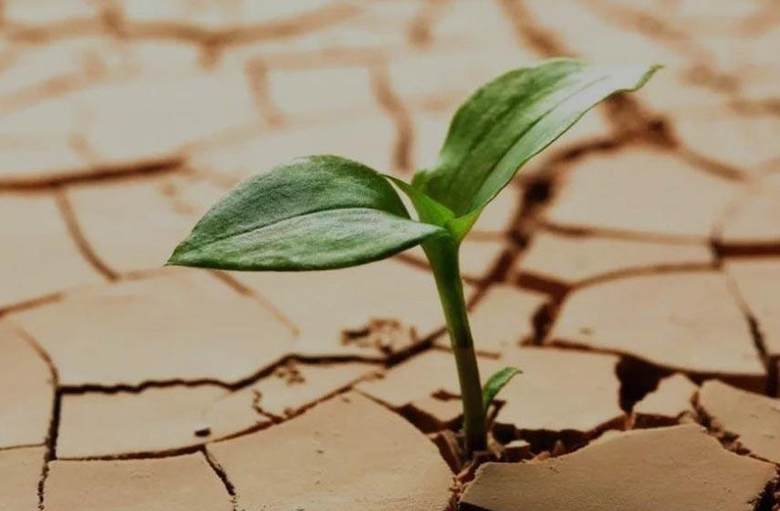 resiliency-2.jpg